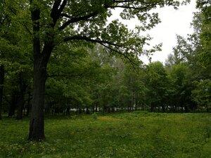 Парк около стадиона 'Волга' (Чебоксары)