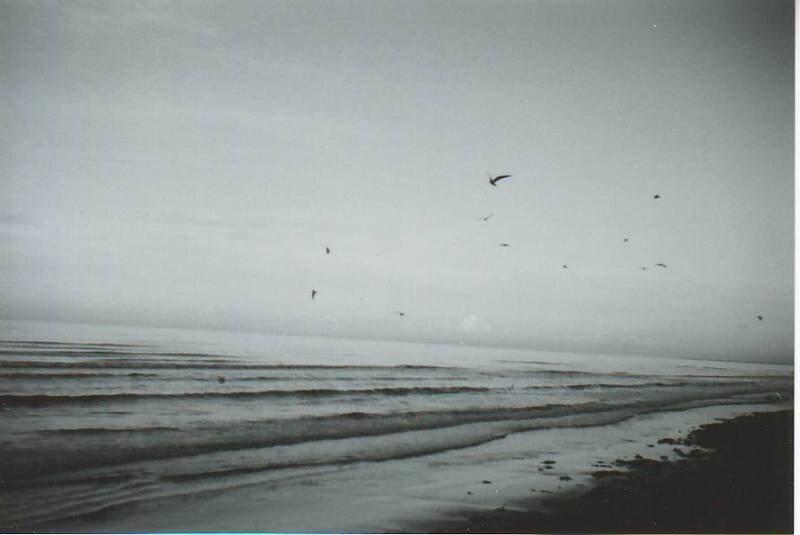 чёрно-белое фото море