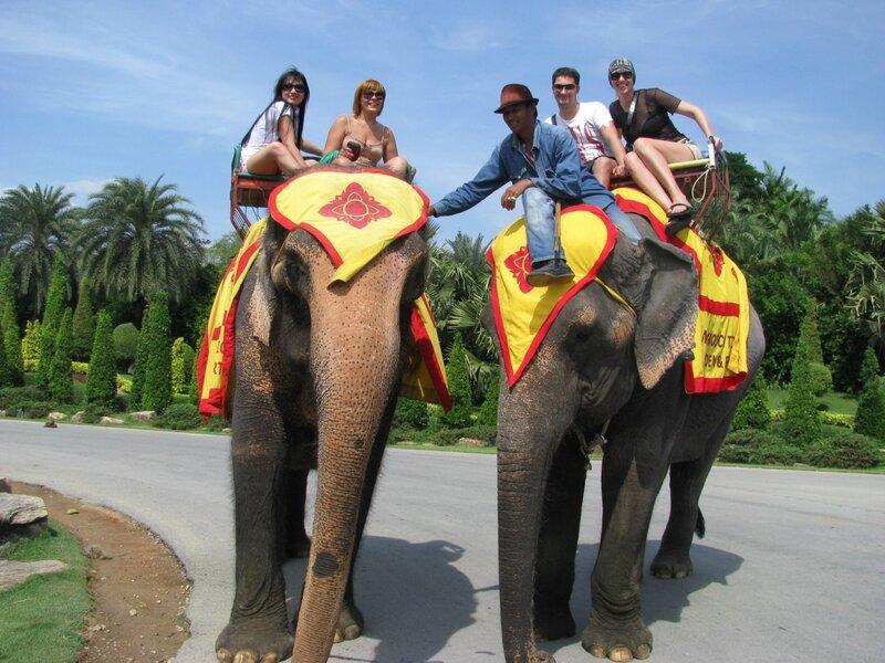 Таиланд, слоны Таиланда, крушение парома в Таиланде