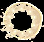 ldavi-flyingdream-starcircle1.png