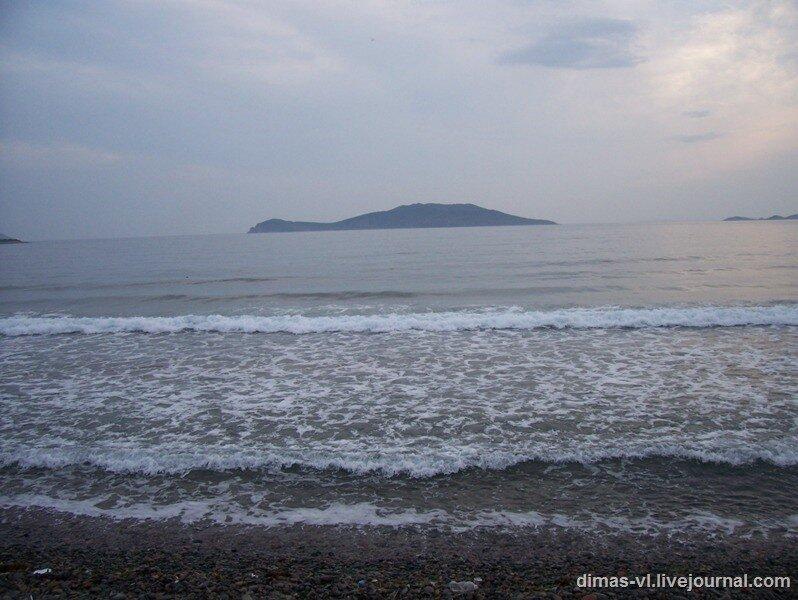 Остров Рейнеке 2008 год