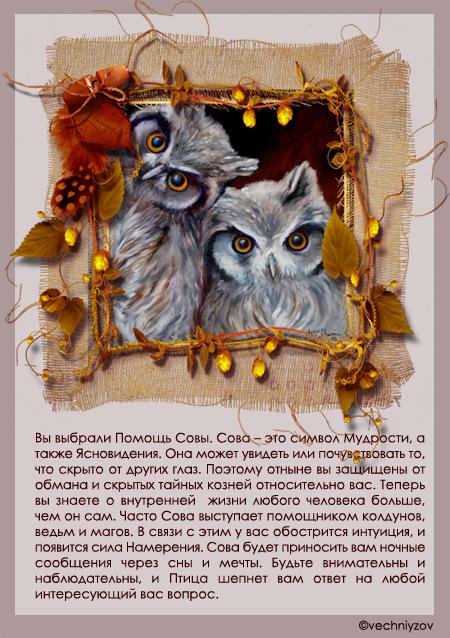 Сова как символ мудрости поздравления