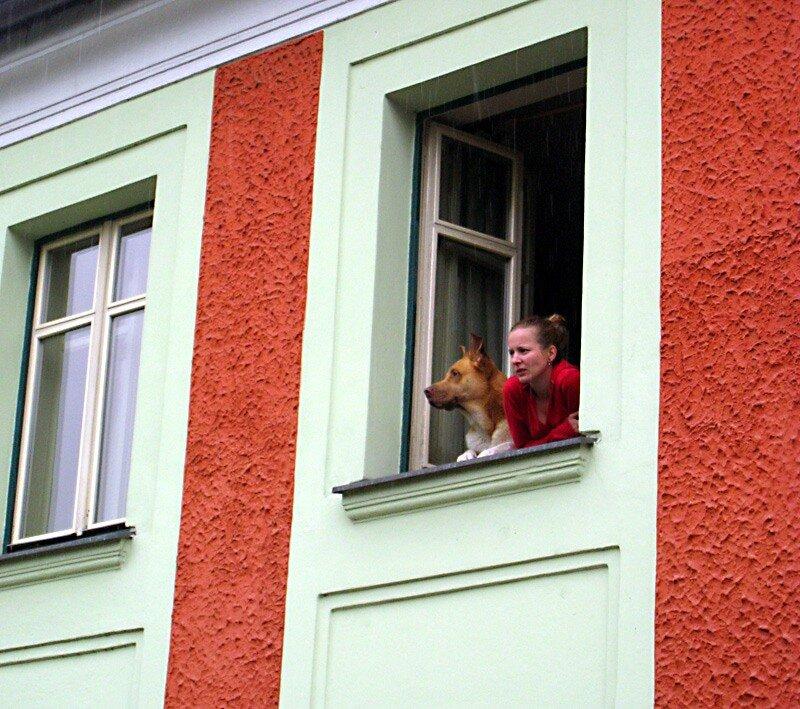 что там сегодня за окном делается?