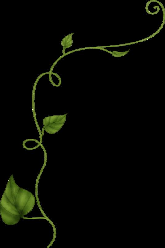 Bien-aimé Tube plante grimpante - . CB96