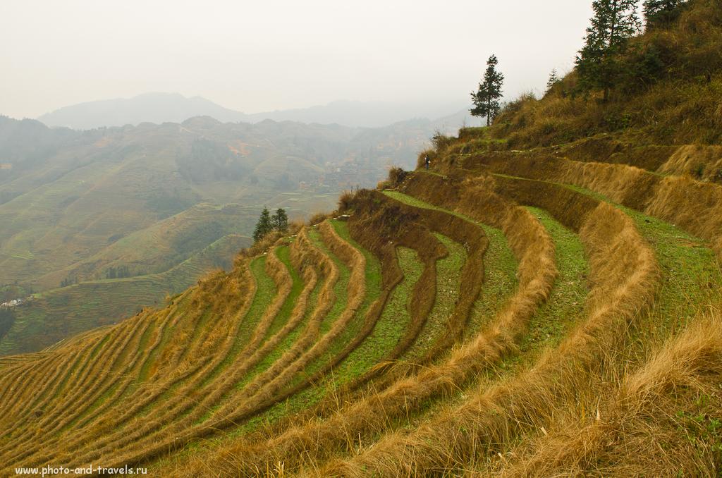 Фото 13. Весна в китайских горах. Рисовые террасы Лунцзи. Как добраться из Гуйлиня