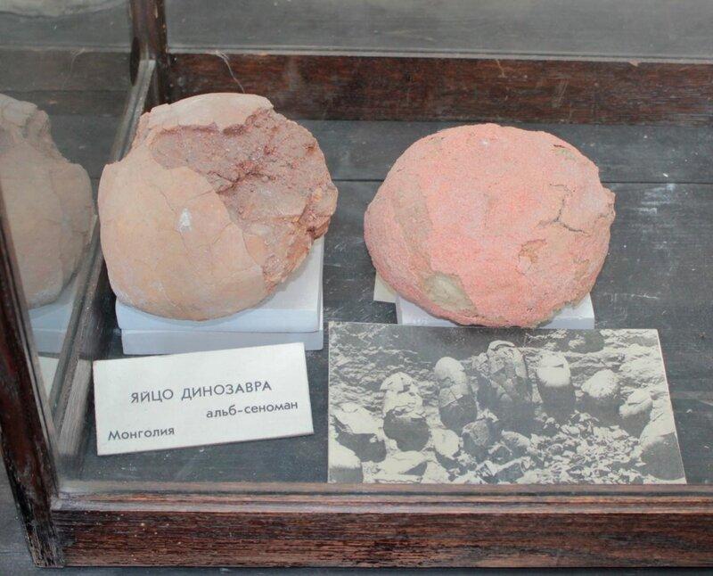 Яйцо динозавра (альб-сеноман). Монголия