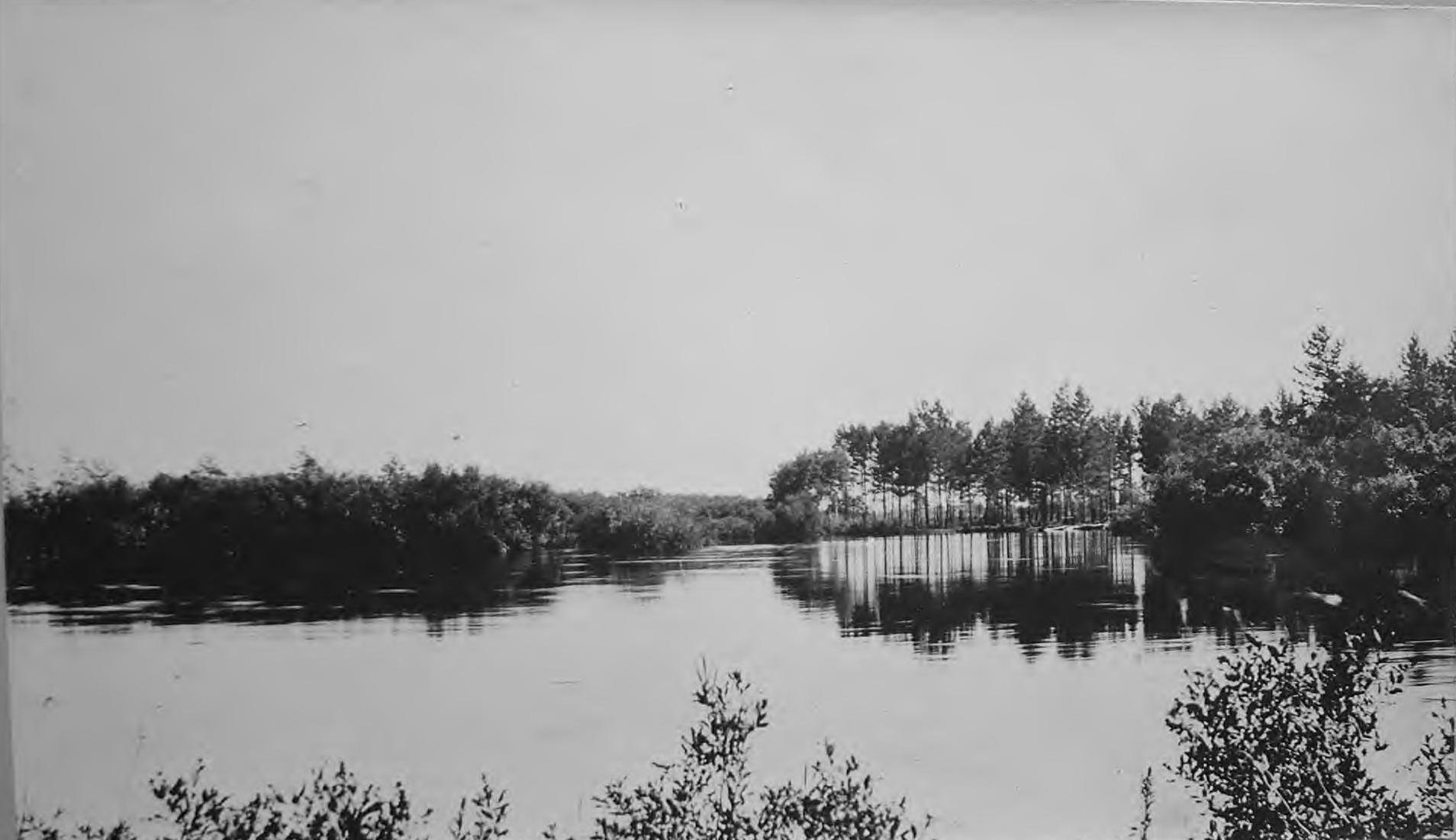 Река Горбыль