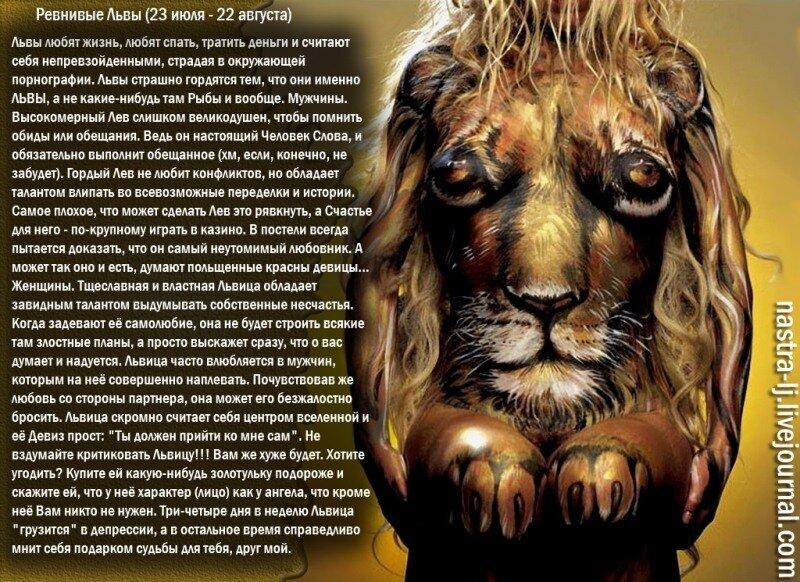 Любовный гороскоп для льва женщины