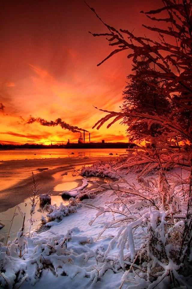 100 самых красивых зимних фотографии: пейзажи, звери и вообще 0 10f583 522a3be7 orig