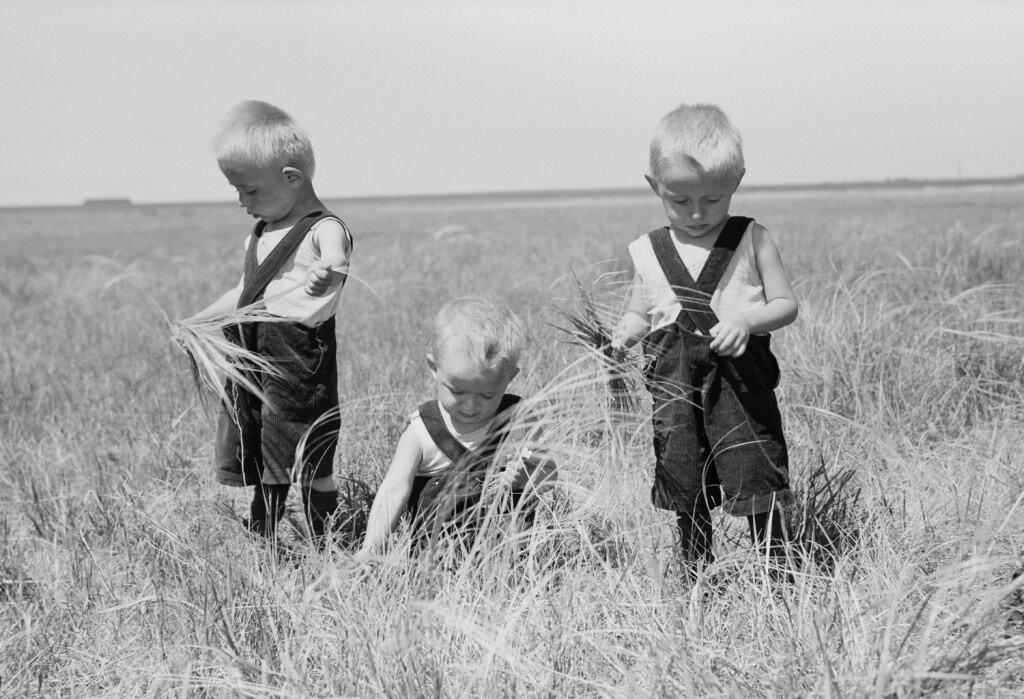 Жаркое лето, 50-е годы ХХ века