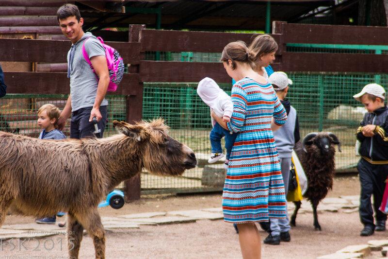 kyiv_zoo-100.jpg
