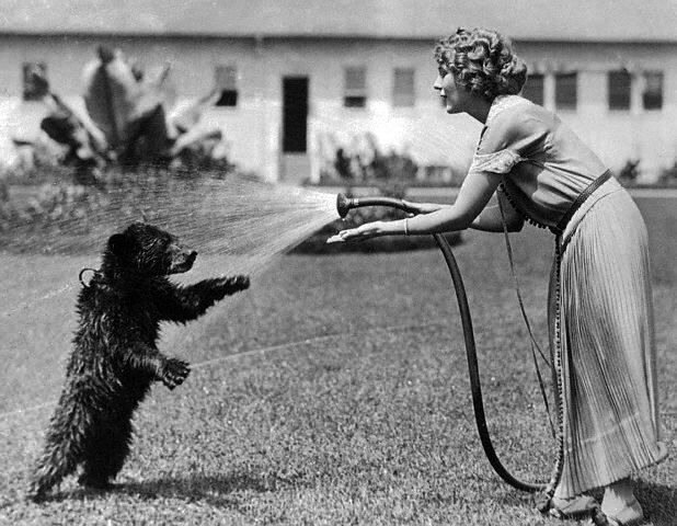 Mary Pickford with Bear Cub