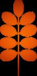 «оранжевый мир»  0_6d70f_bbd0da40_S