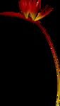 element117_ks.png