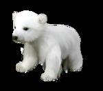 Северный полюс (150)