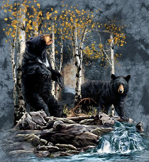 Найди медведей