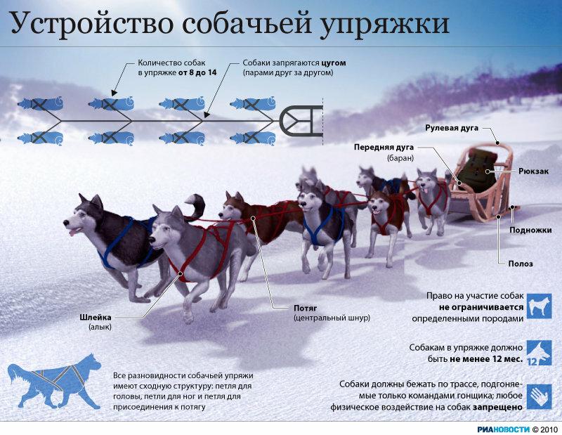 http://img-fotki.yandex.ru/get/4708/131815524.0/0_55d0b_aecc3db3_XL.jpg