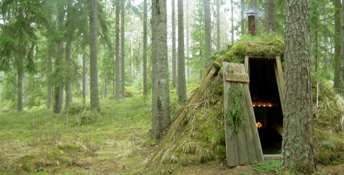 отель в швеции в лесу