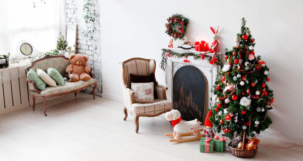 идеи как дома сделать новогоднюю фотостудию десяти лет Куценко