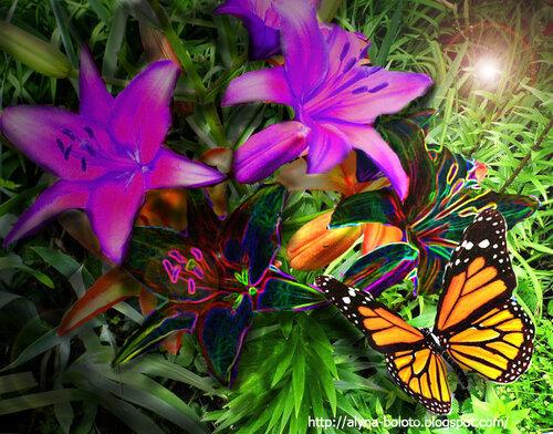 Цветы чужого мира