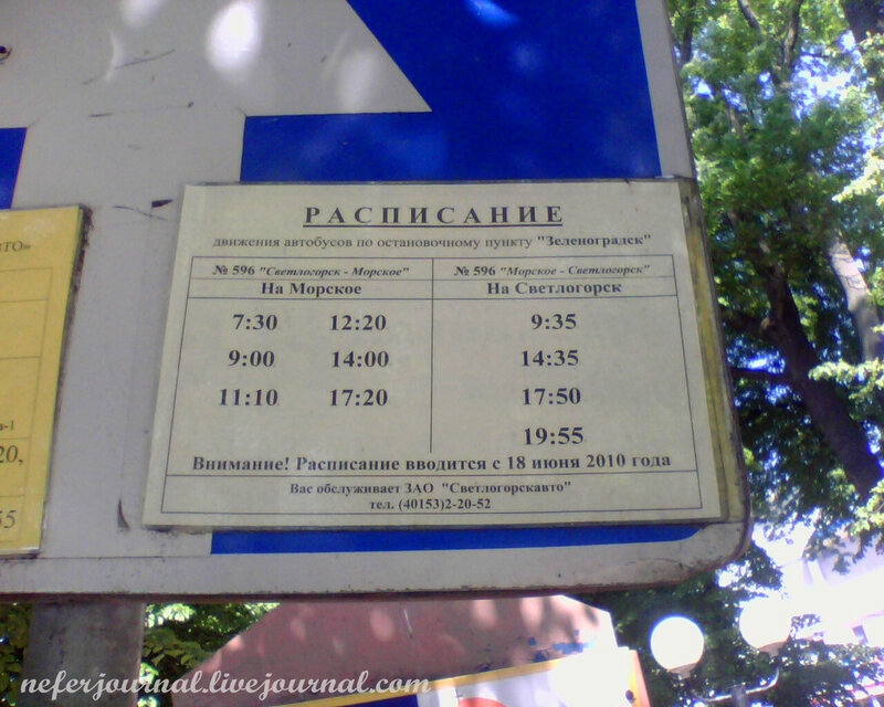 Расписание 203 автобуса