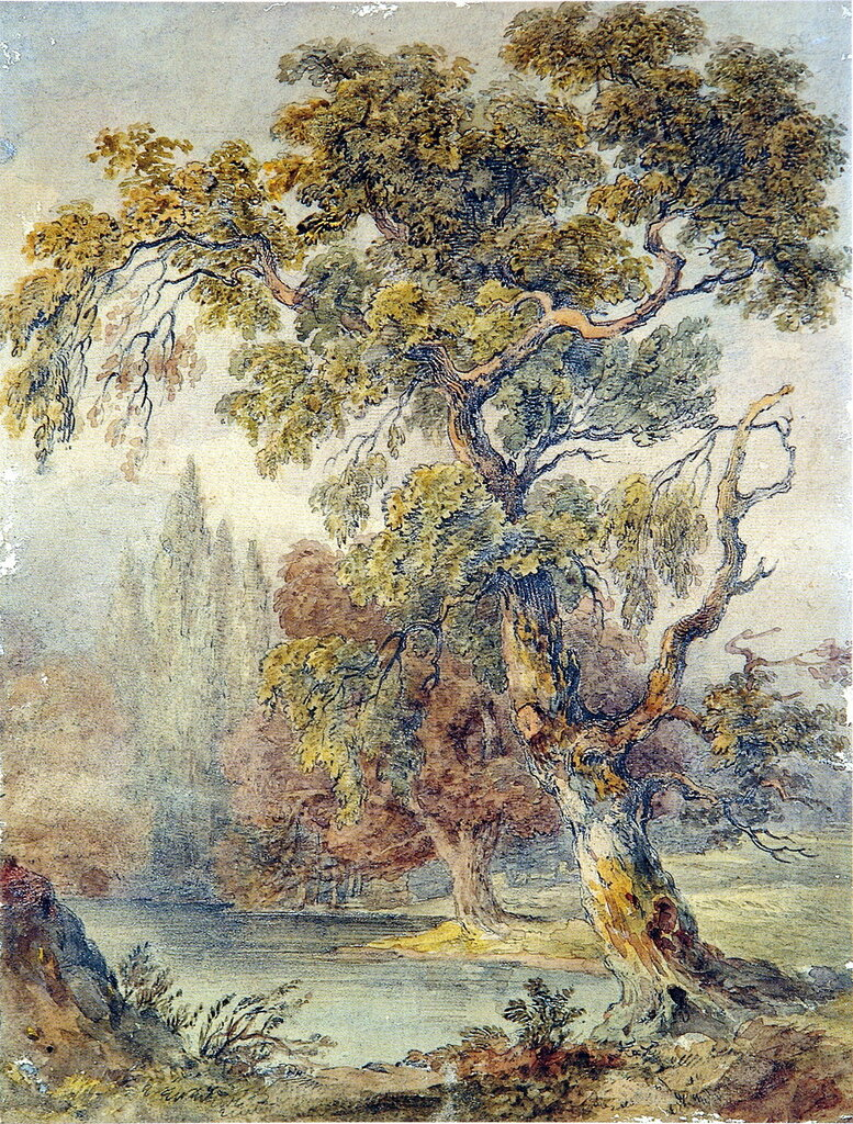 Trees_and_Pond_Ruskin1831-32.jpg