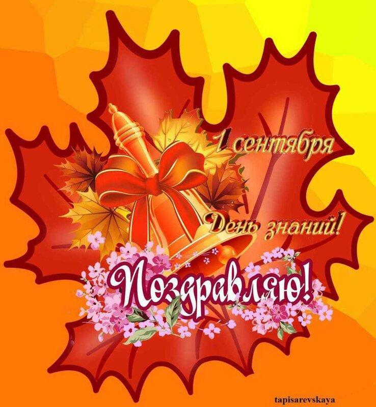 плакат поздравление с 1 сентября распечатать африканская ромашка