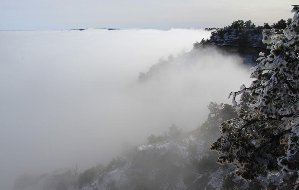 Настоящее море облаков. (Фото National Park Service | Erin Whittaker):