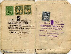 Паспортная книжка 0110