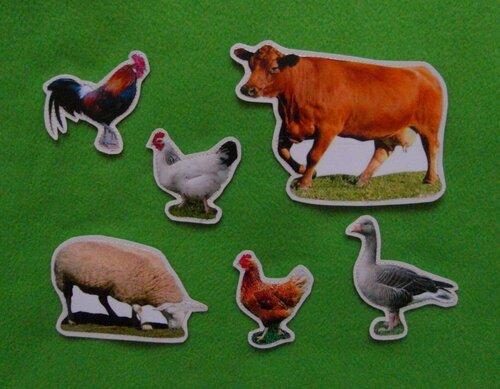 Развивающий коврик Семьландия... карточки Домашние Животные