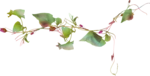 bybecca_everagain_foliage.png