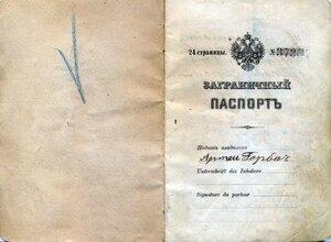 Паспорт заграничный 0010