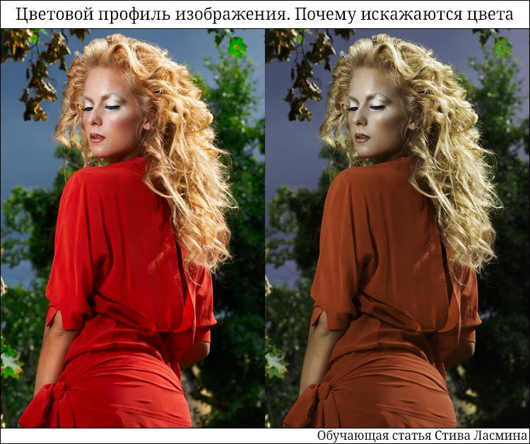 Цветовой профиль изображения. Почему искажаются цвета - обучающая статья Стива Ласмина