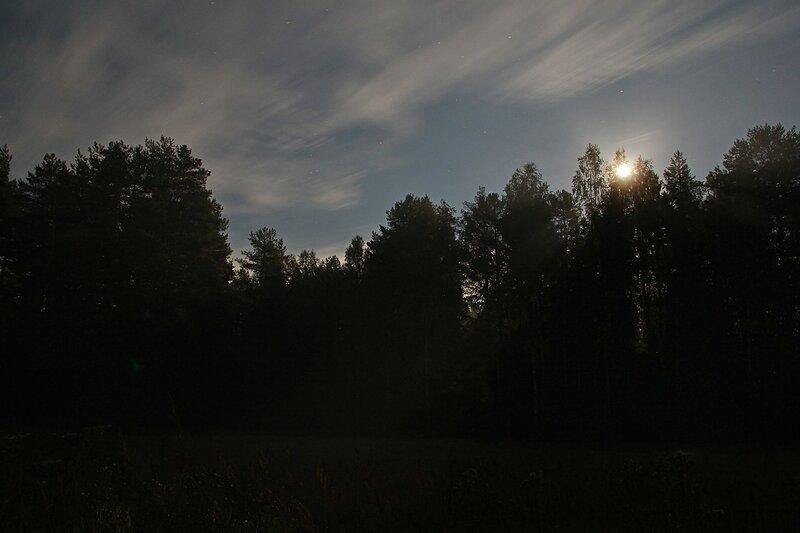Лунный луч в прорехе между деревьями и высветленное от длинной выдержки небо