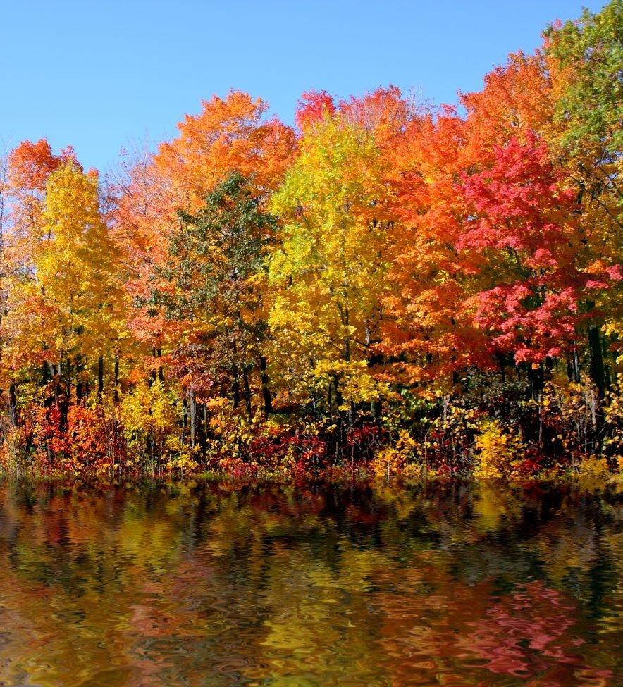 как назвать фото про осень можно схему домика