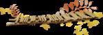 осенний мед (139)