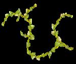 sekadadesigns_peoniesonmygarden_element(61).png