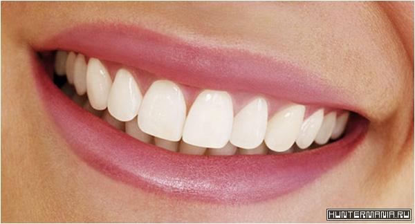 Состояние зубов – зеркало здоровья всего организма
