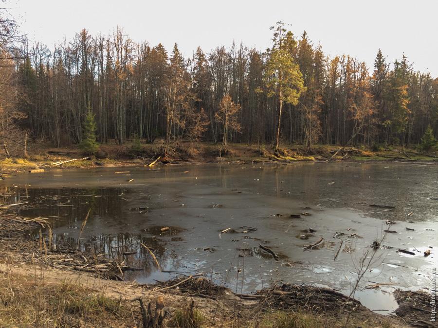 Шилокшанский прудок