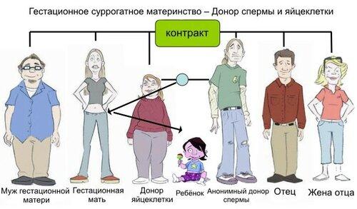 Гестационное суррогатное материнство. Донор яйцеклетки и спермы