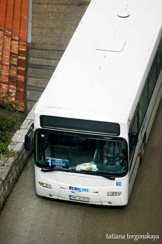 Автобус маршрута №1