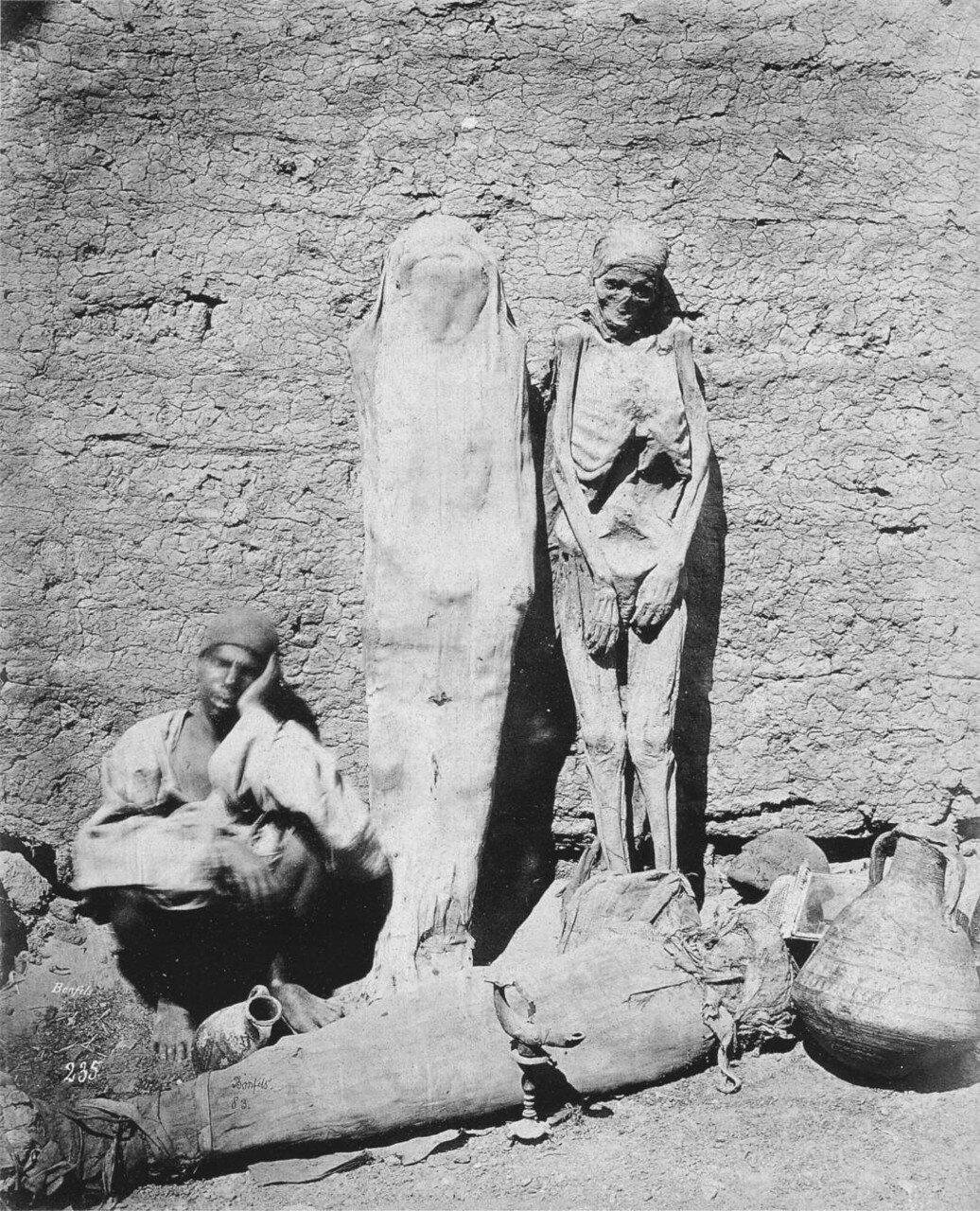 1875. Египетский торговец мумиями