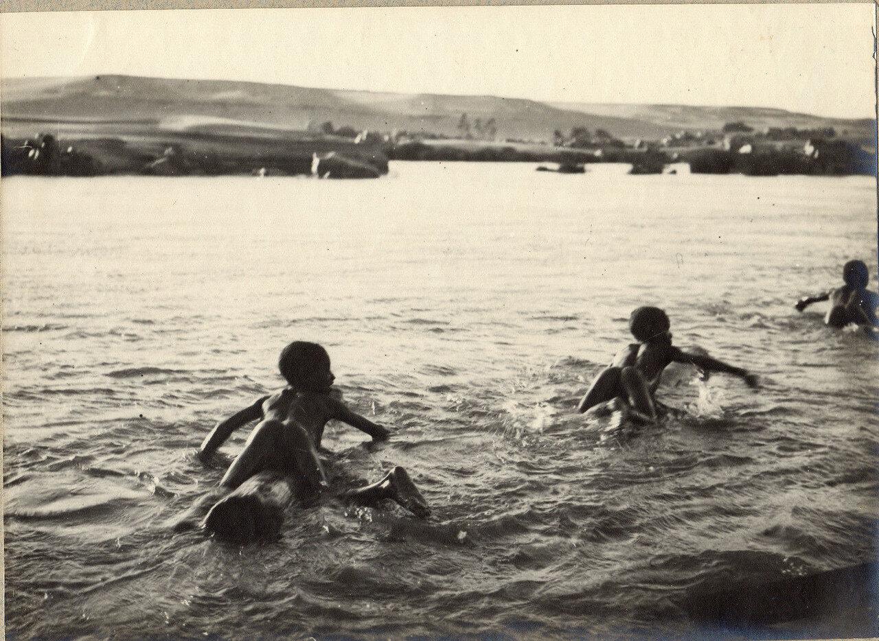 1897. Дети купаются в Ниле