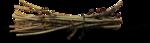 осенние тропинки (99)