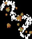 волшебная осень (125)