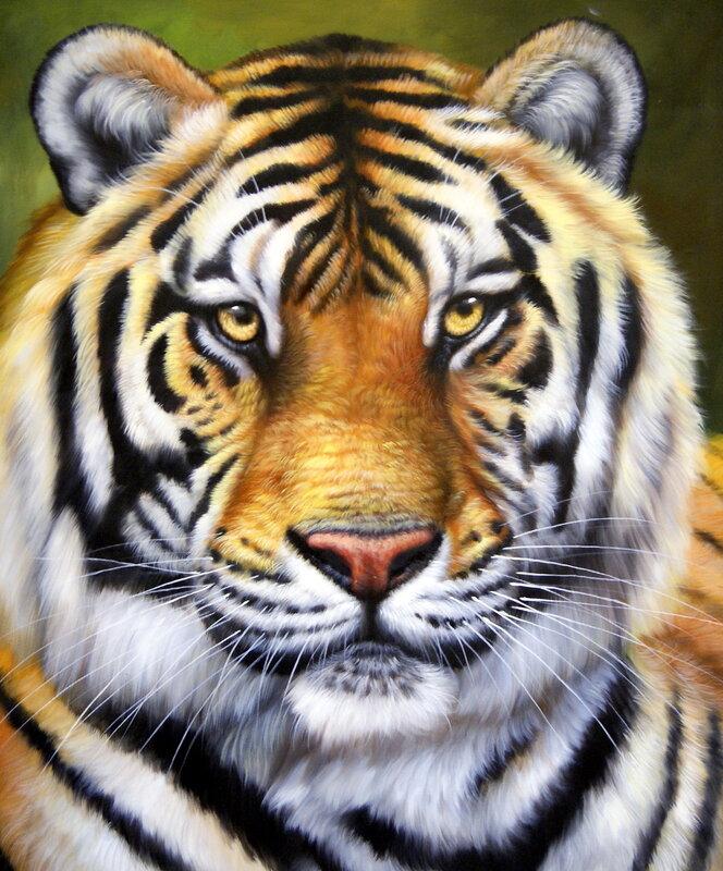 """Набор для вышивания бисером  """"Тигр 5 """". Набор состоит - авторская схема, чешский бисер, 29 цветов , канва..."""
