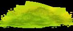 sekadadesigns_peoniesonmygarden_element(67).png