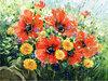 Маки цветут х.м. 60-80.jpg