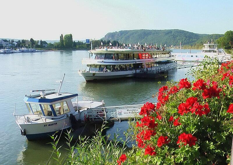 Цветы на Рейне.
