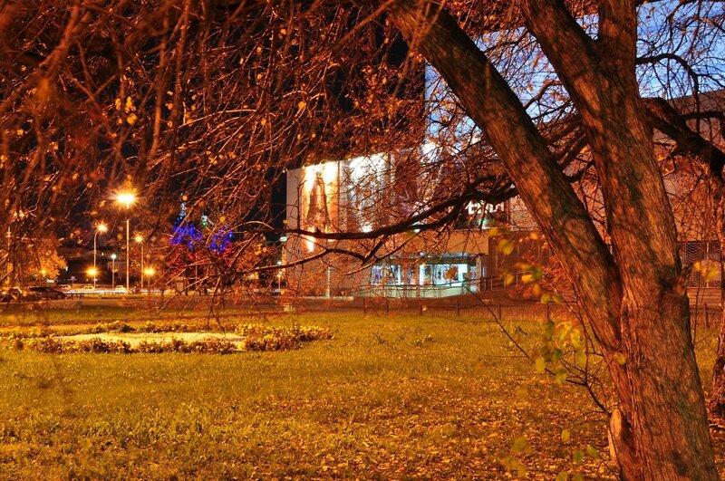 Ночной Екатеринбург, осень